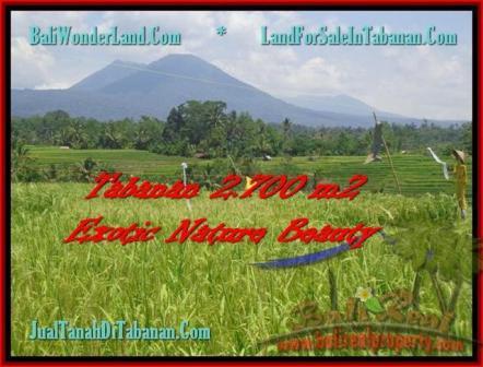 TANAH di TABANAN BALI DIJUAL MURAH 27 Are Sawah, Gunung, Sungai dan Kota Denpasar