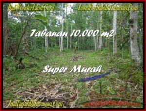 TANAH MURAH di TABANAN BALI Untuk INVESTASI TJTB177