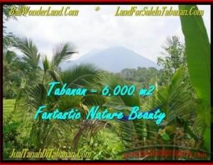 JUAL TANAH MURAH di TABANAN BALI 60 Are View Gunung, sawah, sungai dan Laut Selatan