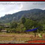 TANAH DIJUAL MURAH di TABANAN Untuk INVESTASI TJTB163