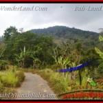 JUAL TANAH di TABANAN 20,000 m2 View gunung dan danau buyan