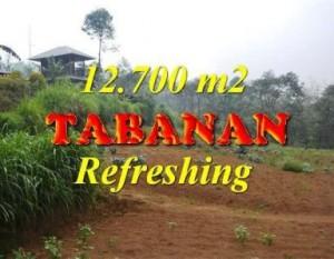 JUAL TANAH di TABANAN 127 Are View kebun dan gunung