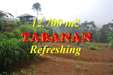 JUAL TANAH MURAH di TABANAN BALI Untuk INVESTASI TJTB167