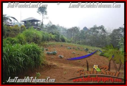 TANAH di TABANAN BALI DIJUAL MURAH 12,700 m2 View kebun dan gunung