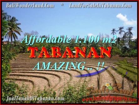 DIJUAL TANAH di TABANAN BALI Untuk INVESTASI TJTB170
