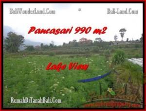 TANAH di TABANAN BALI DIJUAL MURAH 9,9 Are View Danau Buyan dan Gunung