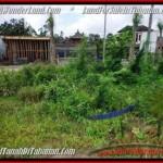 TANAH JUAL MURAH TABANAN 500 m2 Lingkungan Perumahan