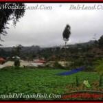 TANAH MURAH di TABANAN BALI TJTB203