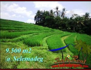 TANAH di TABANAN Bali DIJUAL Murah TJTB210
