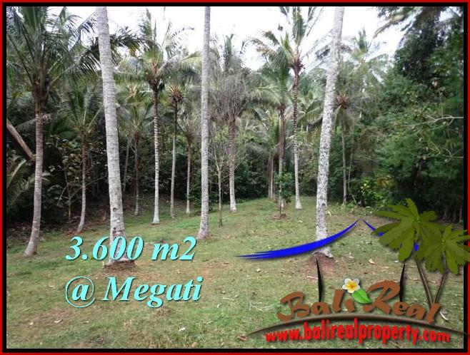 TANAH MURAH di TABANAN BALI 3,600 m2 View Kebun