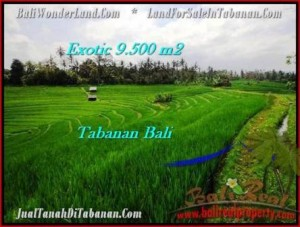 TANAH MURAH di TABANAN BALI 9,500 m2  View Gunung dan sawah