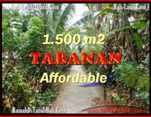 JUAL TANAH MURAH di TABANAN 30 Are View kebun
