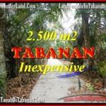 JUAL TANAH MURAH di TABANAN BALI 2,500 m2 di Tabanan Selemadeg