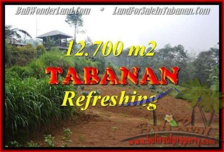 JUAL TANAH di TABANAN 12,700 m2 View kebun dan gunung