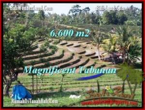 TANAH di TABANAN JUAL 6,600 m2  View Gunung sawah dan laut