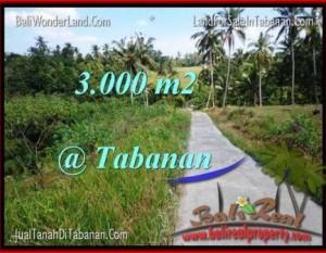 JUAL MURAH TANAH di TABANAN Untuk INVESTASI TJTB205