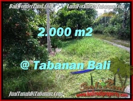 JUAL TANAH di TABANAN BALI 20 Are View Kebun