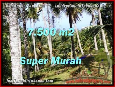 JUAL MURAH TANAH di TABANAN 7,500 m2 di Tabanan Selemadeg