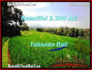 INVESTASI PROPERTI, TANAH di TABANAN DIJUAL TJTB209