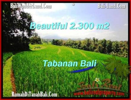 DIJUAL TANAH di TABANAN BALI 2,300 m2 di Tabanan Selemadeg