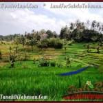 TANAH di TABANAN BALI DIJUAL MURAH 9,500 m2 View Gunung dan sawah