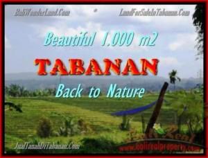 TANAH DIJUAL MURAH di TABANAN BALI 1.000 m2 di Tabanan Selemadeg