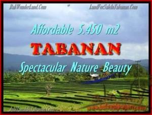 JUAL TANAH MURAH di TABANAN BALI 54,5 Are View sawah gunung dan laut