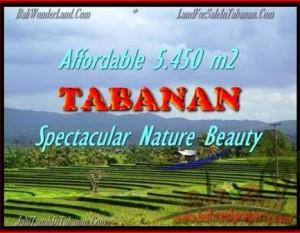 INVESTASI PROPERTI, TANAH di TABANAN DIJUAL TJTB152