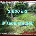 TANAH JUAL MURAH TABANAN 2,000 m2 View Kebun