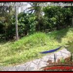 JUAL TANAH di TABANAN 20 Are View Kebun