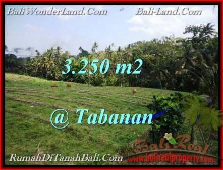 JUAL TANAH di TABANAN 32.5 Are View Sawah dan laut