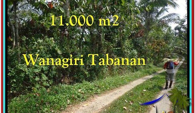 JUAL MURAH TANAH di TABANAN TJTB213