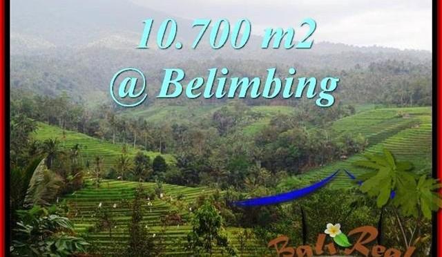 TANAH di TABANAN BALI DIJUAL MURAH 107 Are View Gunung, sawah