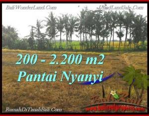TANAH di TABANAN BALI DIJUAL MURAH 22 Are View sawah