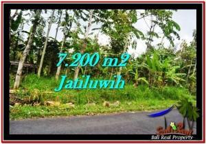 TANAH di TABANAN DIJUAL 7,200 m2 di Tabanan Penebel