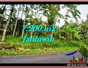 JUAL TANAH MURAH di TABANAN BALI 72 Are di Tabanan Penebel