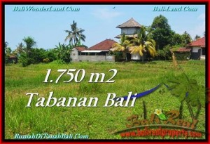 TANAH di TABANAN DIJUAL TJTB231