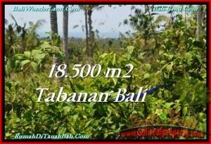 DIJUAL TANAH di TABANAN BALI Untuk INVESTASI TJTB232