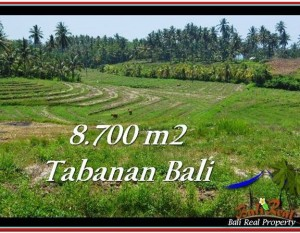 JUAL MURAH TANAH di TABANAN BALI 87 Are View Laut dan Gunung
