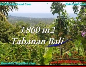 JUAL TANAH di TABANAN BALI 3,860 m2  View Laut dan Kebun