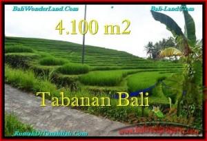 TANAH di TABANAN BALI DIJUAL MURAH 41 Are View sawah dan Kebun