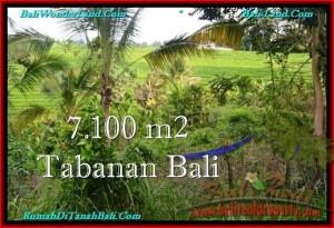 JUAL TANAH MURAH di TABANAN BALI TJTB240