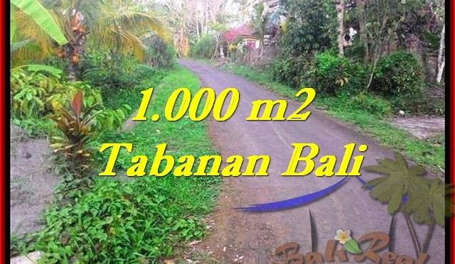 JUAL TANAH di TABANAN 10 Are View Kebun