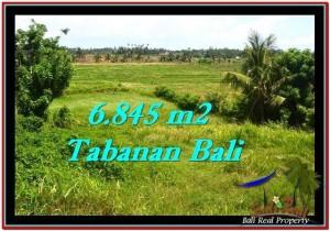 TANAH DIJUAL MURAH di TABANAN BALI TJTB245