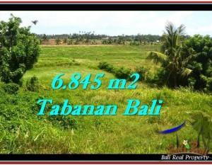 JUAL TANAH di TABANAN BALI 6,845 m2  View sawah dan laut