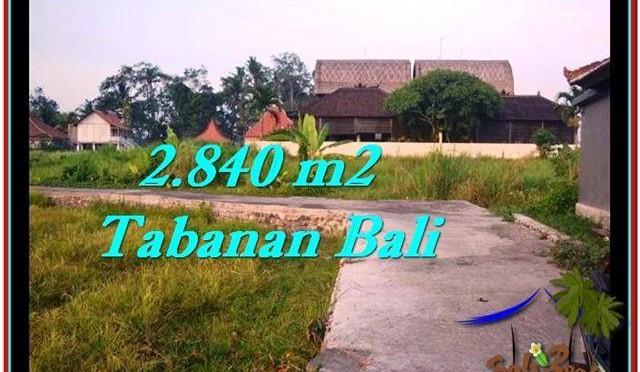 JUAL TANAH MURAH di TABANAN BALI 2,840 m2 View sawah