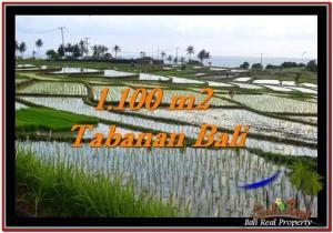 INVESTASI PROPERTI, DIJUAL TANAH di TABANAN BALI TJTB248