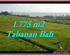 INVESTASI PROPERTI, DIJUAL TANAH di TABANAN BALI TJTB251
