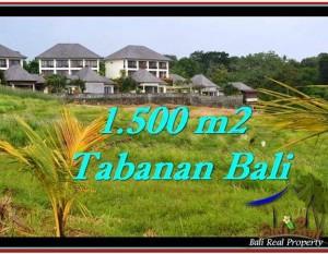 TANAH di TABANAN BALI DIJUAL MURAH 15 Are View sawah, laut dan gunung