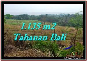 INVESTASI PROPERTY, JUAL TANAH MURAH di TABANAN BALI TJTB253